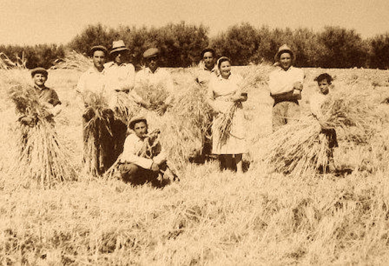 contadini in campagna
