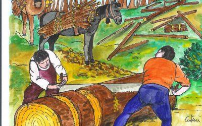 il taglio della legna